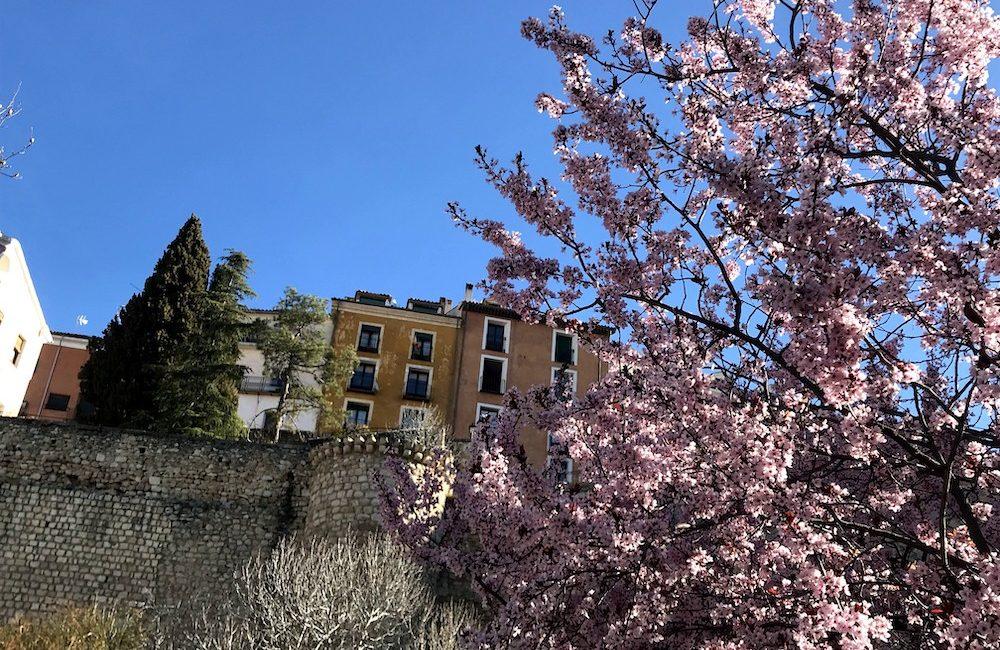 4 propuestas para disfrutar de la Primavera en Cuenca